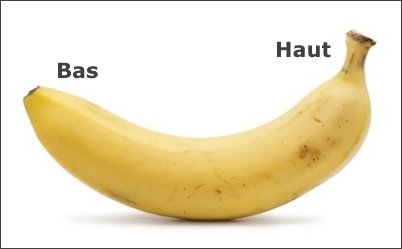 ouverture-banane.jpg